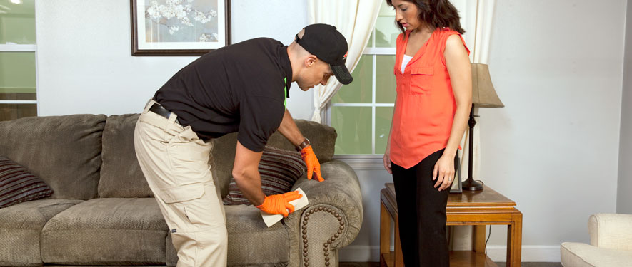 Newport, KY carpet upholstery cleaning