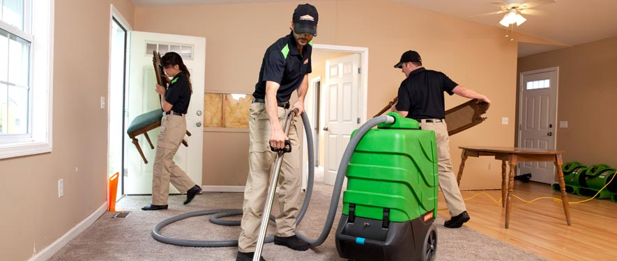 Newport, KY cleaning services